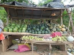 watermelonstand.jpg