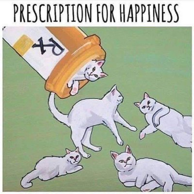 Prescription for Happiness.jpg