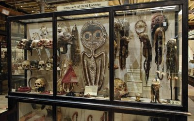 Pitt_Rivers_Shrunken_Heads.jpeg