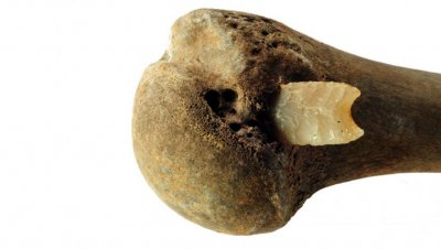 bronze age bone.jpg
