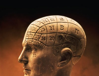 phrenology-bust.jpg