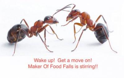 Ants-A.jpg