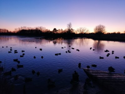 Nantwich Lake at sunset today.jpg