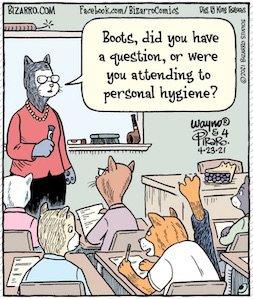 Bizarro knows cats.jpg
