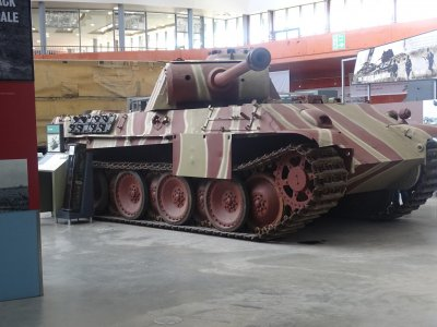 pantherbovington.jpg