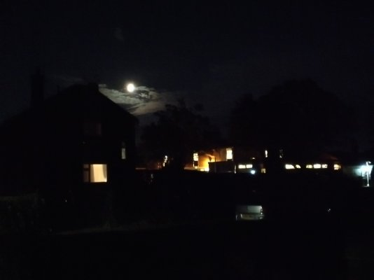 Night Moon.jpg