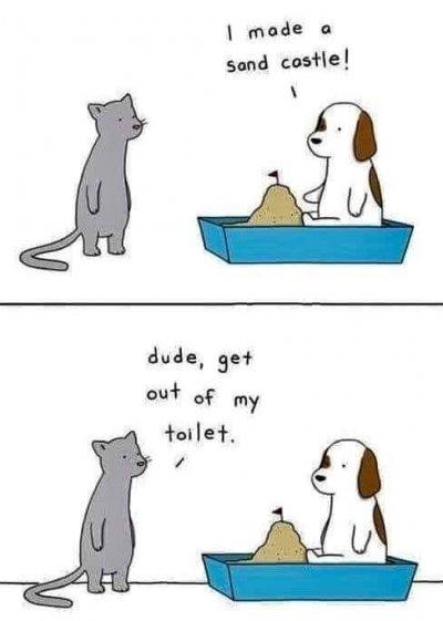 Cat Sandcastle.jpeg
