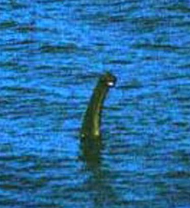 Anthony-Shiels-photo-of-the-Loch-Ness-Monster-taken-from-Urquhart-Castle-990639.jpg